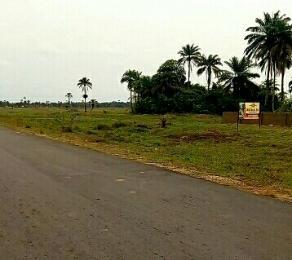 Land for sale ROYAL FLEX ESTATE 3 ANNEX Free Trade Zone Ibeju-Lekki Lagos