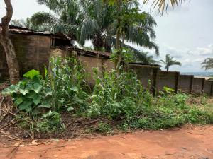 Mixed   Use Land Land for sale 9th Miles Road Enugu Enugu