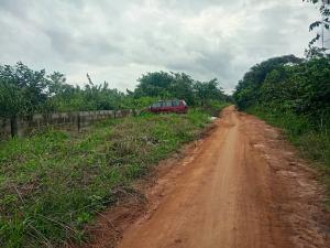 Residential Land Land for sale Adamo Ikorodu Ikorodu Lagos