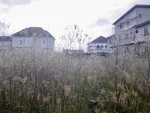 Residential Land Land for sale Orchid Road Lekki 2nd Toll Gate Lekki Lagos