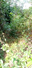 Mixed   Use Land Land for sale Iwuru village  Biase Cross River