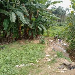 Residential Land for sale Ibasha Magboro Magboro Obafemi Owode Ogun