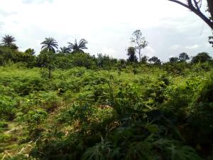 Mixed   Use Land Land for sale Ekpri Nsukara, off Nwaniba road Uyo Akwa Ibom