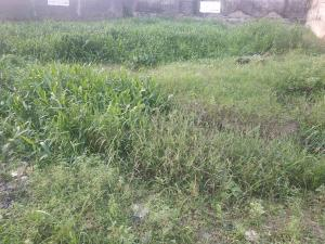 Land for sale Richfield  Ajao Estate Isolo Lagos