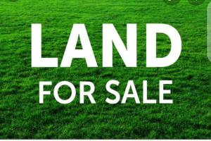 Mixed   Use Land Land for sale Close to Imo poly, Umuagwo, Owerri, Owerri Imo