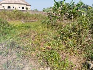 Mixed   Use Land Land for sale Olodo area Iwo Rd Ibadan Oyo