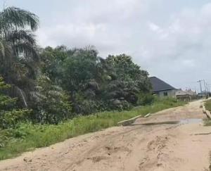 Mixed   Use Land for sale Oku Nubu Via Badagry Expressway Oko Afo Badagry Lagos
