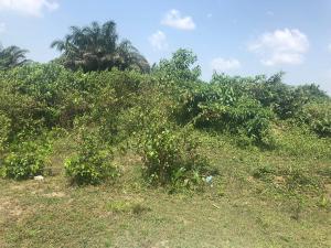 Residential Land Land for sale Genesis Court Phase 2 Badore Ajah Lagos
