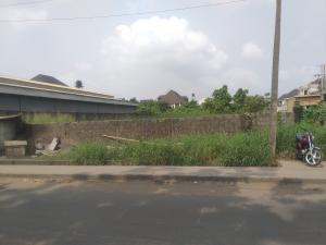 Commercial Land Land for sale Alakoso Avenue, Off Festac Access Road Apple junction Amuwo Odofin Lagos