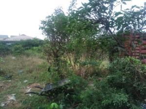 Residential Land Land for sale Erejuwa str Bucknor Isolo Lagos