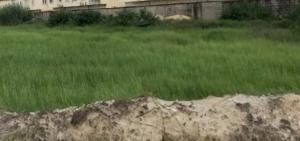 Residential Land for sale Royal Garden Estate Ajah Lagos Lekki Scheme 2 Ajah Lagos