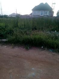 Land for sale Divine Estate Amuwo odofin Apple junction Amuwo Odofin Lagos