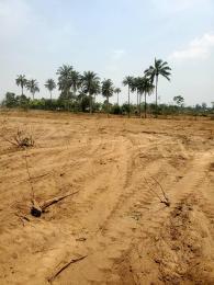 Mixed   Use Land Land for sale Otunla Community, off Akanran road, Olorunsogo,  Ibadan Oyo