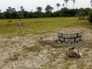 Land for sale Folu-Ise, just after LaChampagne Tropicana Ise town Ibeju-Lekki Lagos