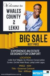Serviced Residential Land Land for sale Sharing Fence With The Popular Victoria Crest Estate chevron Lekki Lagos