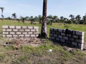 Residential Land for sale Lacampaigne Tropicana LaCampaigne Tropicana Ibeju-Lekki Lagos