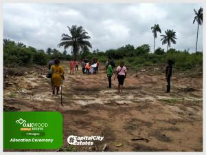 Residential Land Land for sale Santiago Villa Park Estate is strategically located in Isuanlocha Awka Awka North Anambra