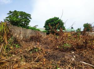 Residential Land Land for sale Goodnews Estate Sangotedo Ajah Lagos