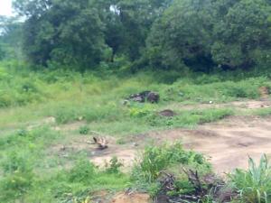 Mixed   Use Land Land for sale Ketu , Epe Epe Road Epe Lagos
