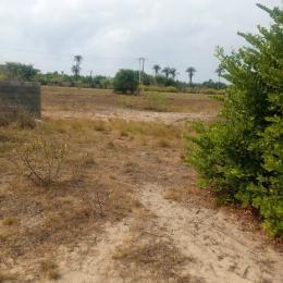 Residential Land Land for sale Lekki Gold City - Phase 2 LaCampaigne Tropicana Ibeju-Lekki Lagos
