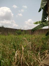 10 bedroom Event Centre Commercial Property for sale Akute akimbo estate via ojodu Berger Yakoyo/Alagbole Ojodu Lagos