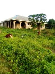 Detached Bungalow House for sale Igando Ikotun/Igando Lagos