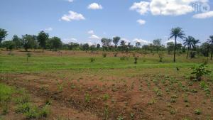 Residential Land Land for sale Oko olówó close to Imam Hamzat College of Education ilorin kwara Ilorin Kwara
