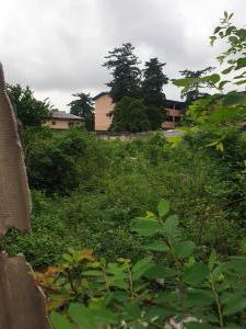 Mixed   Use Land for sale Tafawabalewa Crescent Adeniran Ogunsanya Surulere Lagos