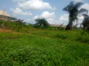 Land for sale Umuapu Ohaji/Egbema Imo