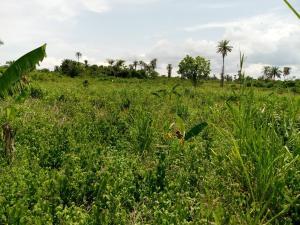 Mixed   Use Land Land for sale Adatan Abeokuta Ogun