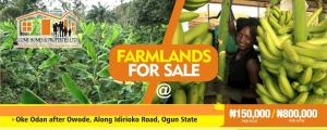 Commercial Land Land for sale Diamond estate Farm land in oke odan after owode along idirioko road ogun state  Obafemi Owode Ogun