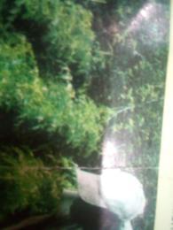 Commercial Land Land for sale Oji-River Enugu