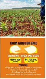 Commercial Land Land for sale Diamond estate Farm land in umuagwo ohaji Imo  Ohaji/Egbema Imo