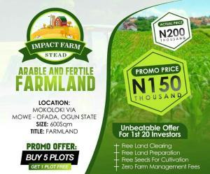 Land for sale Through Mowe Ofada Mokoloki Asipa Obafemi Owode Ogun