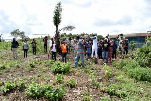 Commercial Land Land for sale Mokoloki Obafemi Owode Ogun