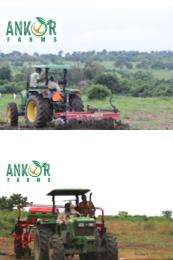 Commercial Land Land for sale Lanlate Ibadan Oyo