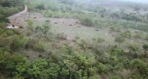 Commercial Land Land for sale MCL Farm  Alabata Abeokuta Ogun