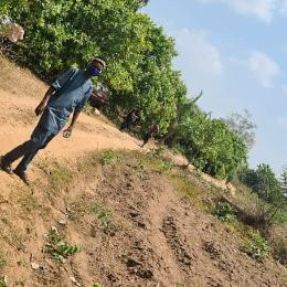 Commercial Land Land for sale Oloko Village Iseyin Oyo