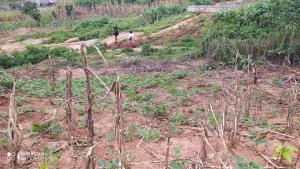 Land for sale Dawaki news engineering relocation layout Gwarinpa Abuja