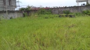 Land for sale Royal Palm Avenue Osborne Foreshore Estate Ikoyi Lagos