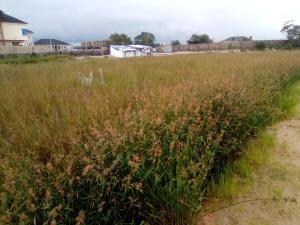 Land for sale Ikota Gra Lekki Lagos