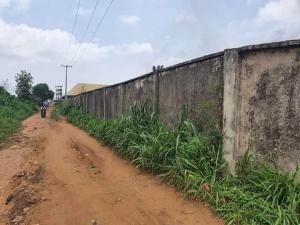 Mixed   Use Land for sale Off Idimu Lasu Road, Igando Akesan. Igando Ikotun/Igando Lagos