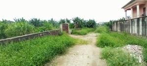 Land for sale Titilayo Adedoyin Street off Omotunde Akinsola Street Omole phase 1 Ojodu Lagos