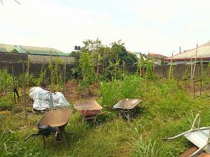Land for sale Rumuibekwe Estate Port Harcourt Rivers