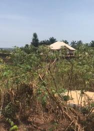 Residential Land Land for sale Iyaba Umudim Nnewi North Anambra
