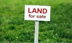 Commercial Property for sale Along the worship centre Avenue, oregun, Ikeja. The land is beside the Citadel Church, oregun Oregun Ikeja Lagos