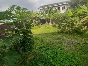 Residential Land Land for sale 15 Akani Street Eagle Island Port Harcourt Eagle Island rumueme/Oroakwo Port Harcourt Rivers