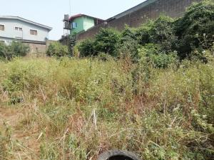 Residential Land Land for sale by Tokunboh Macaulay Magodo GRA Phase 2 Kosofe/Ikosi Lagos