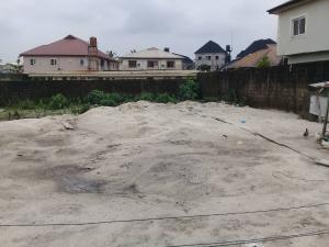 Residential Land Land for sale Olive Park Estate Sangotedo Ajah Lagos