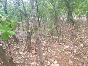 Residential Land for sale Games Village Kaura (Games Village) Abuja